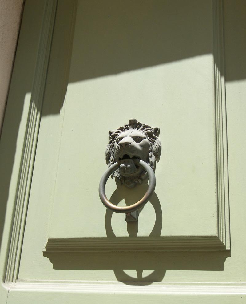 lionvert.jpg