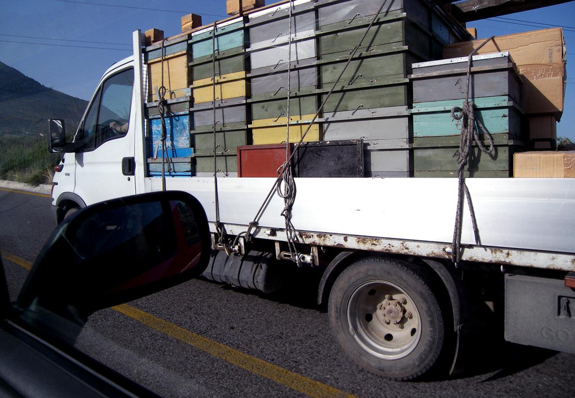 camion3.jpg